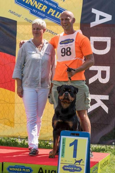 DIESEL Angaros, zwycięzcą  specjalistycznej wystawy rottweilerów ADRK w Niemczech