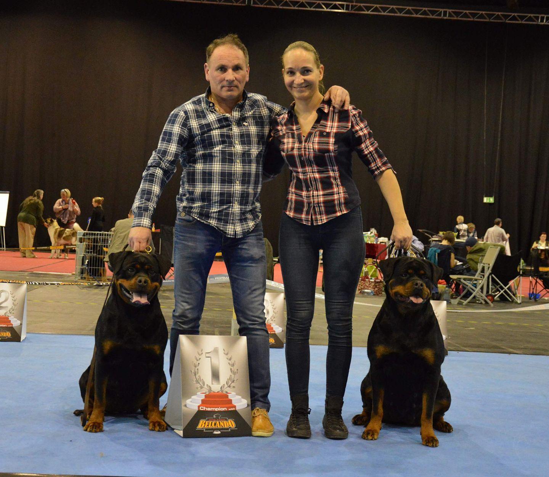 FARINA Angaros CHAMPIONEM NIEMIEC VDH !!! | Rottweiler - Hodowla Rottweilerów Angaros - Rottweilers - Rottweilery