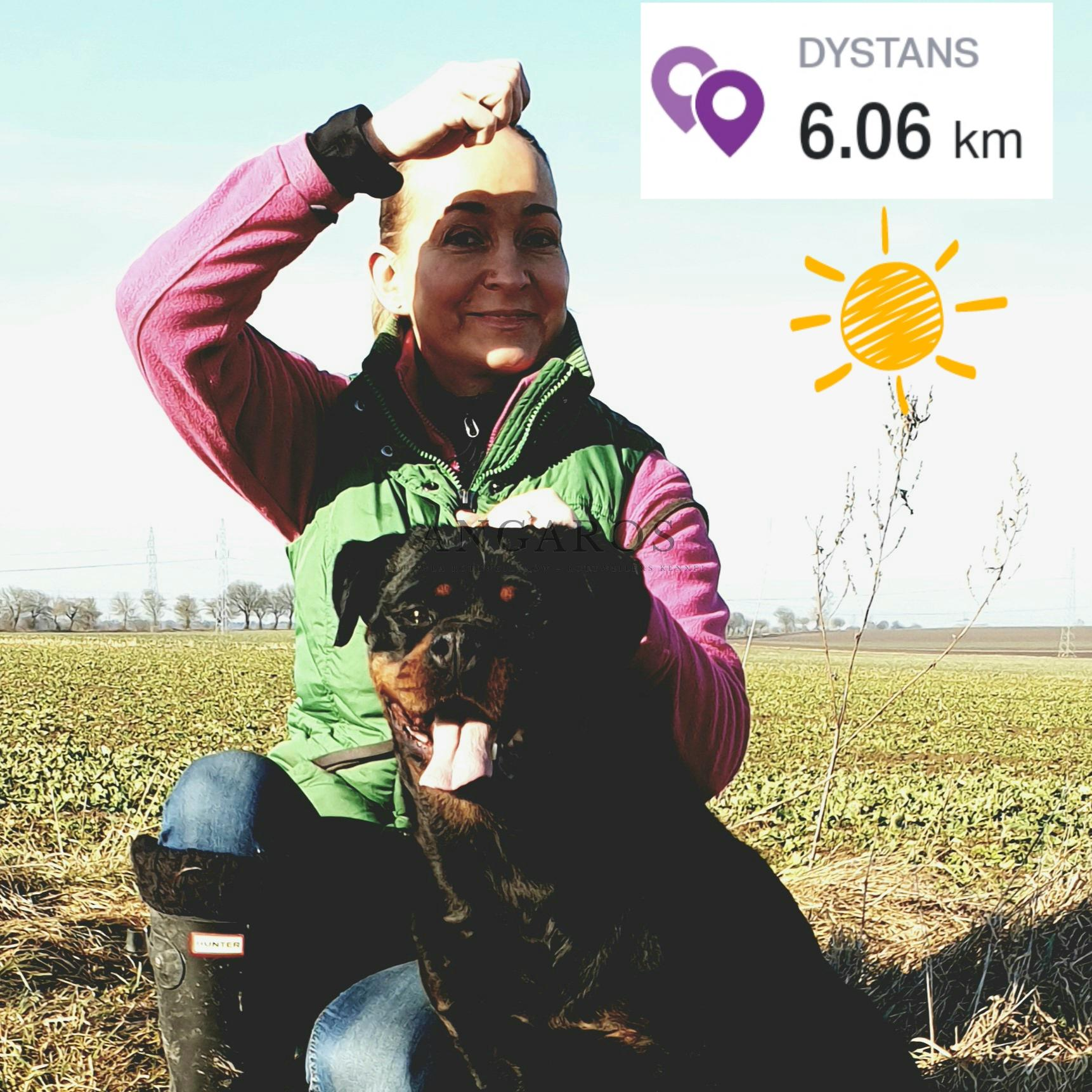 Nareszcie wiosna! Może jeszcze nie kalendarzowa, ale temperatura sprzyja aktywności, nawet mimo rozstopów :-) | Rottweiler - Hodowla Rottweilerów Angaros - Rottweilers - Rottweilery