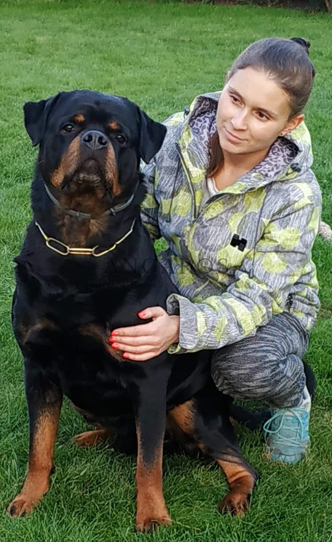 DIESEL Angaros i kochająca go nad życie właścicielka. Cudowna relacja, aż serucho się raduje.. | Rottweiler - Hodowla Rottweilerów Angaros - Rottweilers - Rottweilery